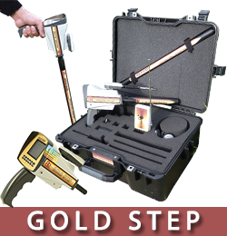 Gold and Metal Detector