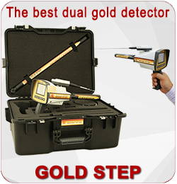 gold Detector